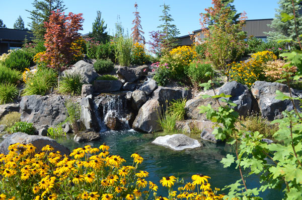 Townhome residents enjoy the benefits of our Central Garden.